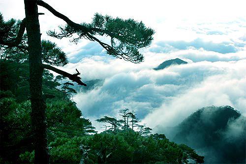 三清山出现瀑布云景观